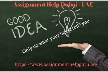 Best Assignment writing help Service provider in UAE