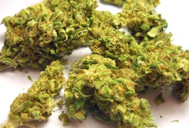 Buy Marijuana  safely and securely online