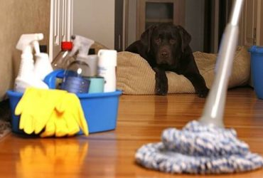 House Maid Cleaning Services Dubai