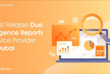 Get Due Diligence Reports for Businesses in UAE with DNB